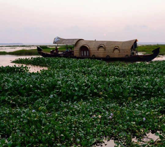 ALLEPPEY HONEYMOON TOUR 3 NIGHTS / 4 DAYS