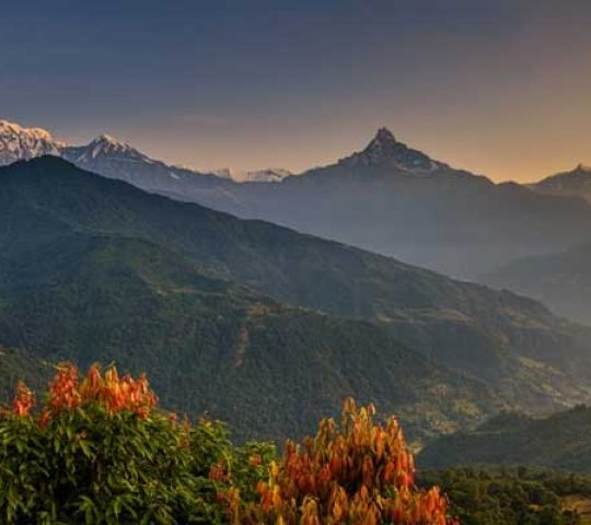 Exciting Pokhara Sightseeing Tour Packages |  6N / 7D